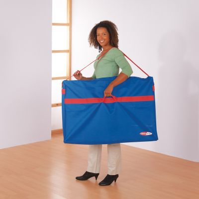 Carry bags for Panel display Systems