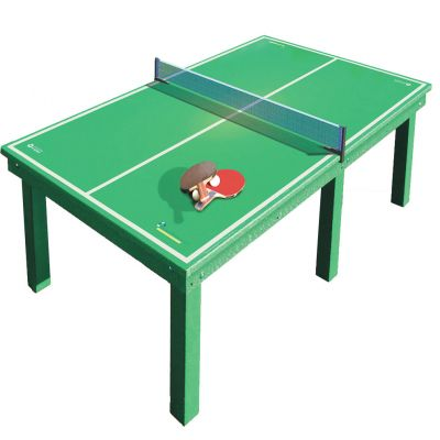 Table Tennis Recreational Table